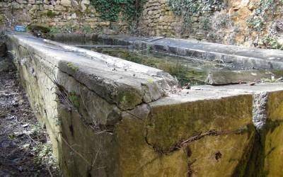 Bassin du lavoir des Combes