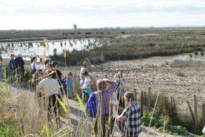 visite de manade lors de la croisière fluviale en Camargue